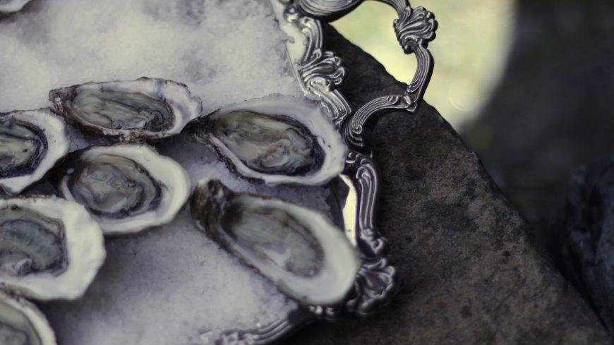 Oysters - © Elisabetta Artemisia Ferrari