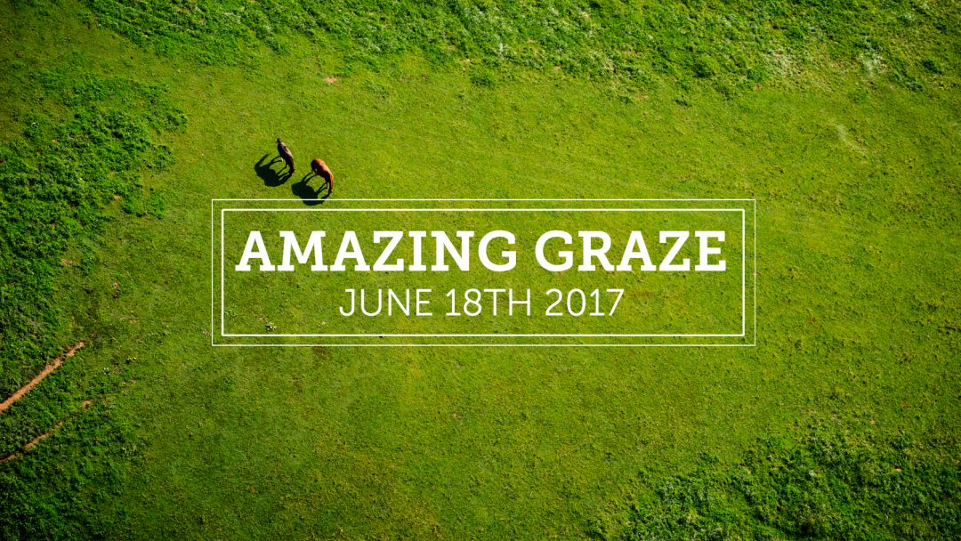 amazinggraze